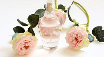 Review | Paul Smith Rose eau de parfum