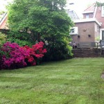 Het najaar: tijd voor de tuin!